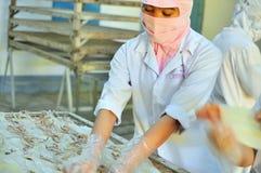 Torkar arbetare tioarmade bläckfiskar för att exportera i en havs- fabrik i Vietnam Arkivbilder