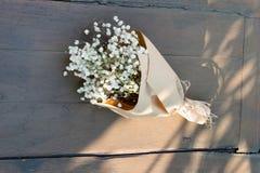 Torkar blommor Royaltyfri Bild