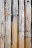 Torkat bambustaket Arkivbilder