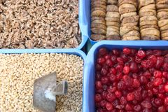 torkat blandat - frukt royaltyfria foton