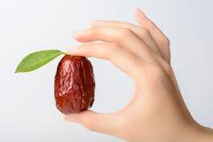 torkat datum - frukt arkivbilder
