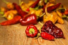 Torkat eller peppar på en gammal trätabell sund mat suddighet bakgrund Vegetarisk mat krydda som är kryddigt royaltyfri bild