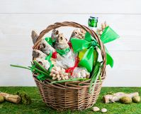 Torkat fisk och öl, dag för St Patrick ` s, Februari 23 royaltyfri bild