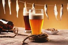 Torkat fisk och öl på tabellen Arkivfoton