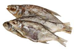 Torkat fiskRAM på en vit bakgrund Fotografering för Bildbyråer