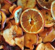 torkat - frukt Fotografering för Bildbyråer
