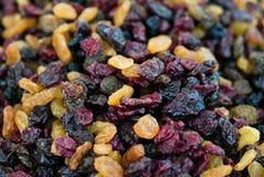 torkat - frukt Royaltyfri Foto