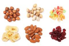 torkat - fruktmuttrar arkivbild