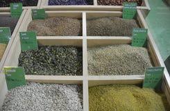 Torkat kryddor och frö Arkivbilder