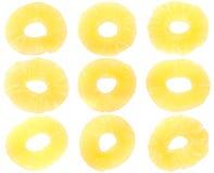 torkat nio ananas Fotografering för Bildbyråer