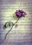 Torkat rosa och musik Royaltyfri Bild