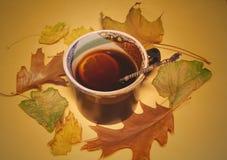 Torkat sidor och kaffe med citronen Autumn Coffee Fotografering för Bildbyråer
