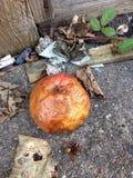 Torkat upp äpplet, matavfalls Royaltyfria Foton