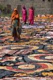 torkdukefärg som torkar jaipur fotografering för bildbyråer