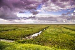 Tormenta apocalíptica en un día nublado en un prado holandés detrás de la d Foto de archivo libre de regalías