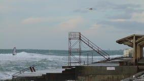 Tormenta con el windsurfer y el pájaro Ondas potentes enormes que se rompen en el malecón en tormenta severa importante Rusia, ci metrajes