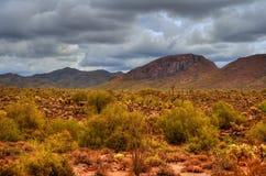Tormenta de desierto del invierno Imagen de archivo libre de regalías