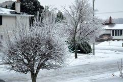 Tormenta de hielo Fotografía de archivo libre de regalías