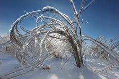 Tormenta de hielo Imagen de archivo libre de regalías