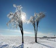 Tormenta de hielo Fotografía de archivo