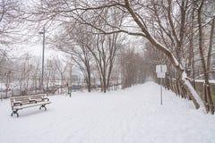 Tormenta de la nieve del invierno en Toronto en febrero imagenes de archivo