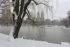 Tormenta de la nieve en el parque foto de archivo libre de regalías