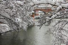 Tormenta de la nieve en la ciudad Imagen de archivo libre de regalías
