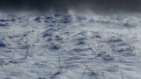 Tormenta de la nieve en montañas almacen de video