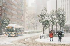 Tormenta de la nieve en Yokohama, Japón Foto de archivo libre de regalías