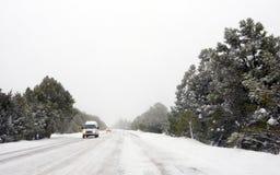 Tormenta de la nieve que ciega Fotografía de archivo
