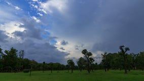 Tormenta de la nube en el parque almacen de metraje de vídeo