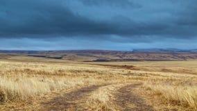 Tormenta del panorama del lapso de tiempo en un campo de trigo amarillo, en tiempo nublado almacen de metraje de vídeo