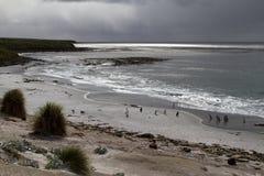 Tormenta en Falkland Islands Fotos de archivo libres de regalías