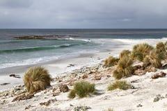 Tormenta en Falkland Islands Imagen de archivo