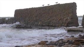 Tormenta en la costa del océano metrajes