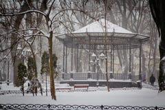 Tormenta fuerte de la nieve en el parque de la ciudad Foto de archivo