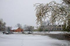 Tormenta súbita de la nieve de abril en Ucrania Ciclón de la nieve de abril Foto de archivo