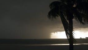 Tormenta tropical almacen de metraje de vídeo