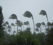 Tormenta tropical Foto de archivo libre de regalías