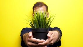 Tormenti l'uomo del fuoco che mostra un vaso con erba al camear archivi video