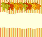 Torn Autumnal Wallpaper Stock Image