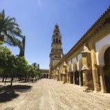 Torn av Alminar i Moské-domkyrkan av Cordoba, Spanien royaltyfri foto