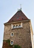 Torn av chateauen Ouchy Lausanne Royaltyfria Bilder