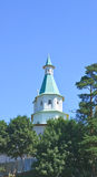 Torn av David House 23rd jerusalem juni kloster nya russia för 2007 för kremlin moscow för antagandedomkyrkadmitrov russia för re Royaltyfria Foton