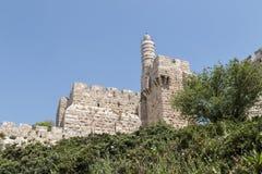 Torn av David - Jerusalem Fotografering för Bildbyråer
