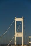 Torn av den äldre Severn Crossing, connectin för upphängningbro Royaltyfri Foto