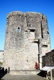Torn av den Carmarthen slotten Royaltyfria Bilder