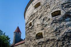Torn av den gamla staden Tallinn, Estland Arkivbild