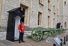 Torn av den London beefeateren och kanoner Arkivbild