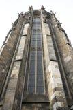 Torn av domna i Aachen Arkivbilder